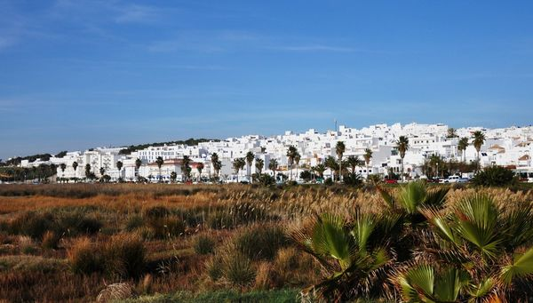 Conil de la Frontera is the neighboring village of a frame surfcamp andalusia
